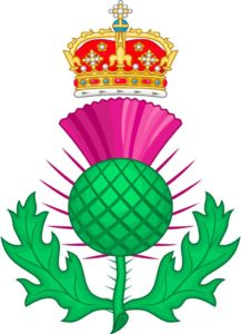 Royal emblem of Scotland. The thistle.