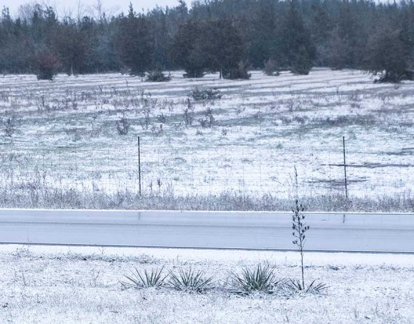 First light snow on farm fields